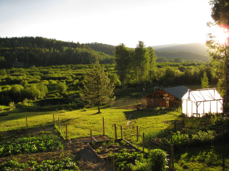 Growing Food Businesses In Canada