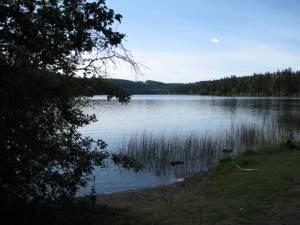 Cariboo, Lake, fishing