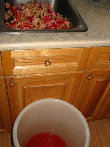 make rhubarb wine