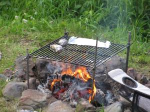 outdoor cooking, trout, campfire