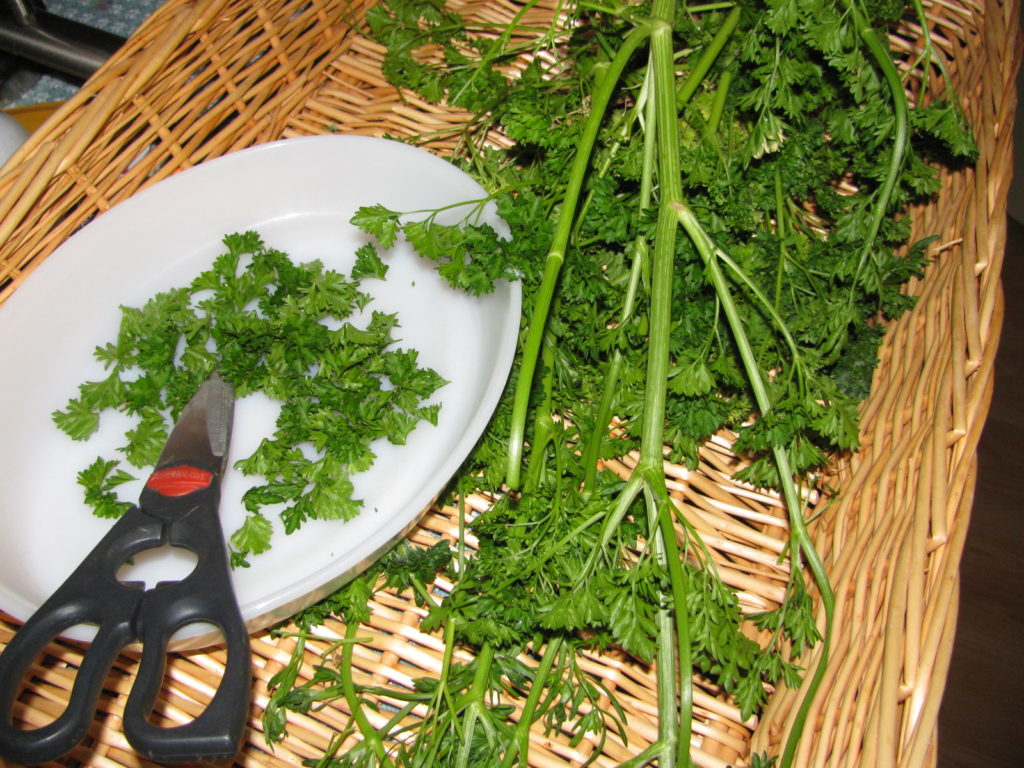 How to Dry Herbs Without a Dehydrator #food #herbs #cooking