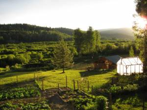 country living in a cariboo valley