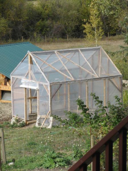 Come Into the Greenhouse