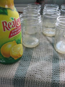 home canning and preserving fruit