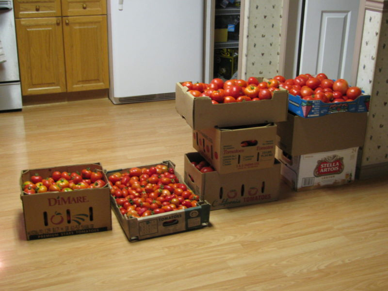 Turning Tomatoes into Sauce (Part 1)