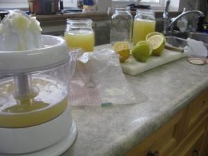 freezing lemon juice - Freezing Garlic