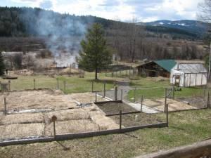 IMG 8436 300x225 Burning in Springtime