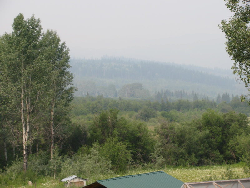 Wild Fires in BC