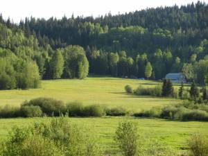 May-2011-Cal-farm