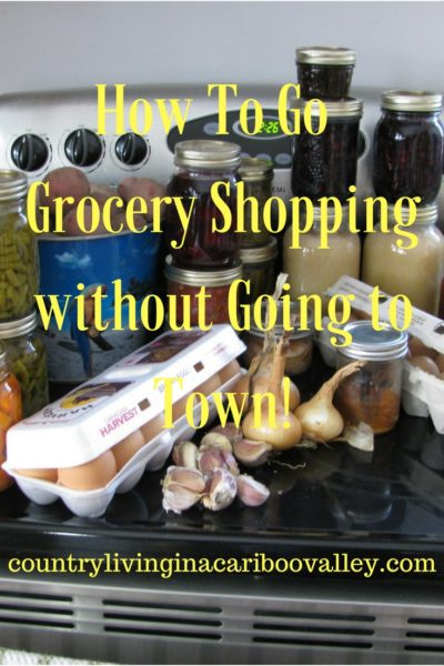 How I Shop for Groceries – I Don't Go to Town!