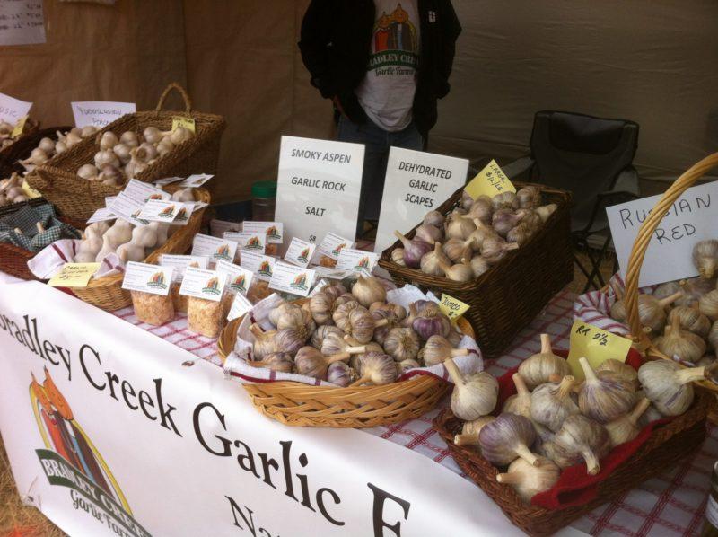 Fun at the South Cariboo Garlic Festival!