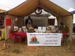 Canadian seed garlic