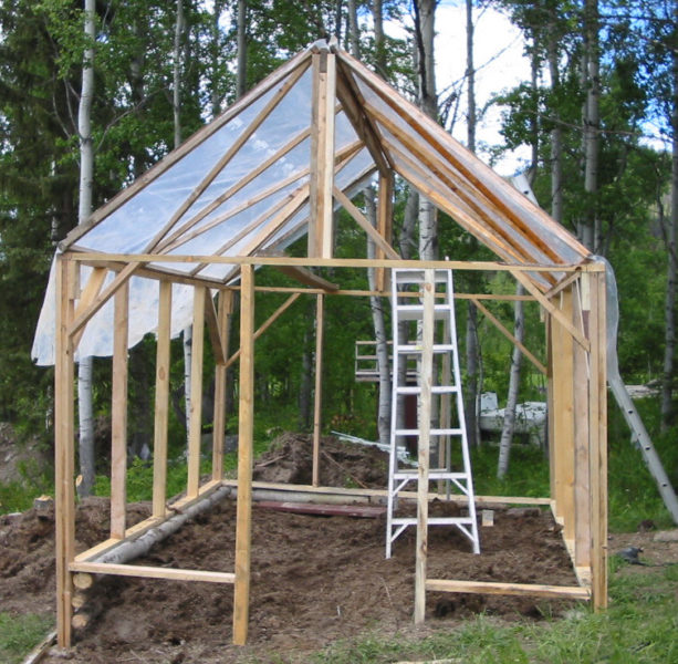 greenhouse, gardening