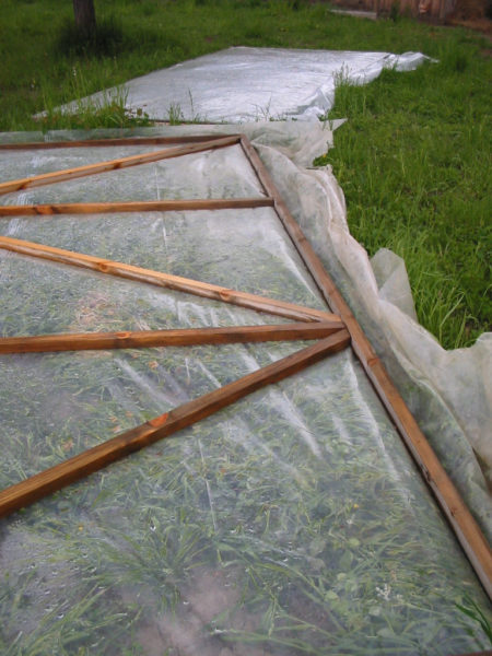 greenhouse, hoop house