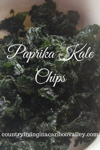 Paprika Kale Chips – Recipe
