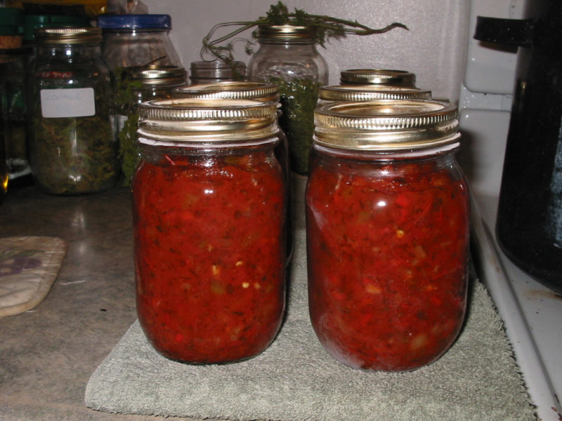 Jars of home canned Salsa ready for the pantry.