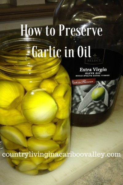 How to Preserve Garlic in Oil