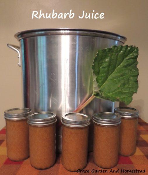 Rhubarb recipes, rhubarb juice