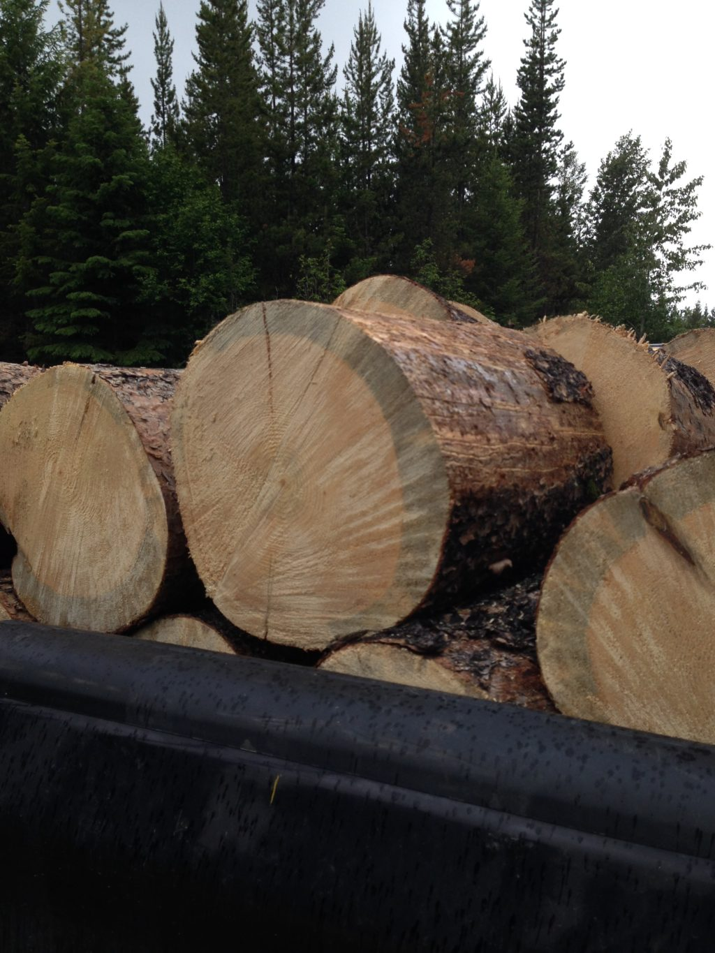 firewood, heating with wood, woodstove