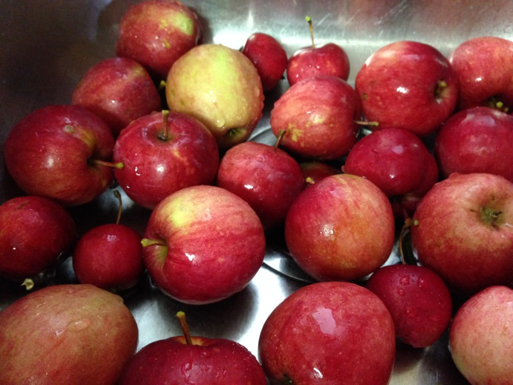 easy apple crisp recipe, apples, fruit trees