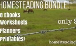 The Homesteading Bundle – Available Now