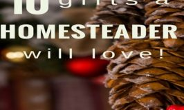 10 Great Gifts for the Homesteader