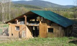 a home owner built barn with chickens and room for other livestock