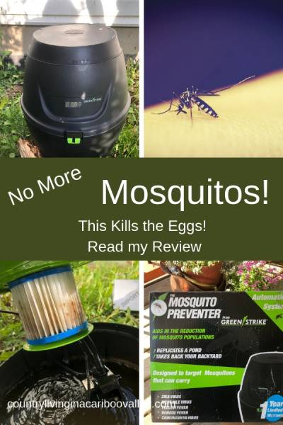 Bothered by mosquitos? We use the Green Strike Mosquito Preventer. Read my review. Enjoy time on the patio on summer evenings! #mosquito #summer #outdoors