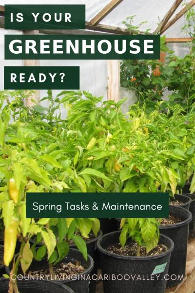 Our checklist of Greenhouse Spring maintenance. Everything to get your Greenhouse growing productively this gardening season. #garden #greenhouse #hoophouse